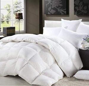 Luxurious Heavy Full/Queen Size Siberian Goose Down Comforter All-Season Duvet Insert, Premium Baffle Box