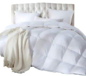 Luxurious Full/Queen Size Siberian Goose Down Comforter, Duvet Insert