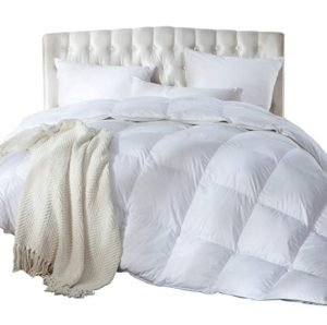 Luxurious King/California King Size Siberian Goose Down Comforter, Duvet Insert, 1200 Thread Count